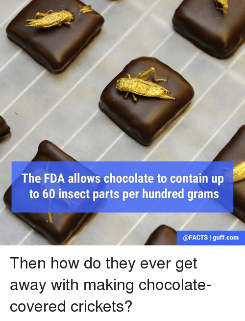 Memes, 🤖, and Fda: The FDA allows chocolate to contain up  to 60 insect parts per hundred grams  @FACTS I guff.com Then how do they ever get away with making chocolate-covered crickets?