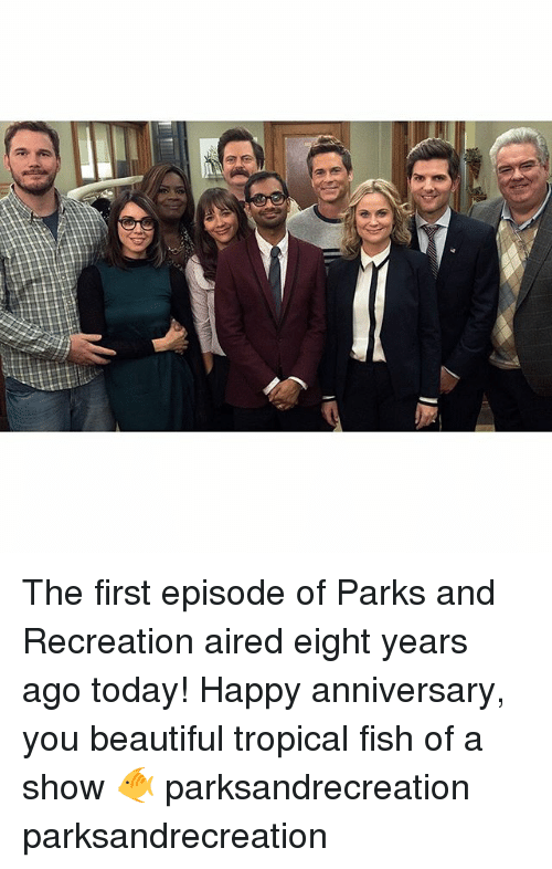 Beautiful, Memes, and Parks and Recreation: The first episode of Parks and Recreation aired eight years ago today! Happy anniversary, you beautiful tropical fish of a show 🐠 parksandrecreation parksandrecreation