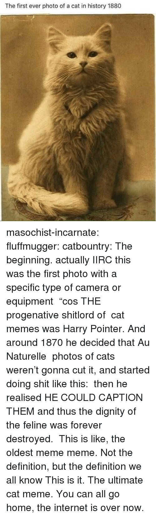 """Meme Meme: The first ever photo of a cat in history 1880 masochist-incarnate:  fluffmugger:  catbountry: The beginning. actually IIRC this was the first photo with a specific type of camera or equipment """"cos THE progenative shitlord of cat memes was Harry Pointer. And around 1870 he decided that Au Naturelle photos of cats weren't gonna cut it, and started doing shit like this: then he realised HE COULD CAPTION THEM and thus the dignity of the feline was forever destroyed.   This is like, the oldest meme meme. Not the definition, but the definition we all know   This is it. The ultimate cat meme. You can all go home, the internet is over now."""