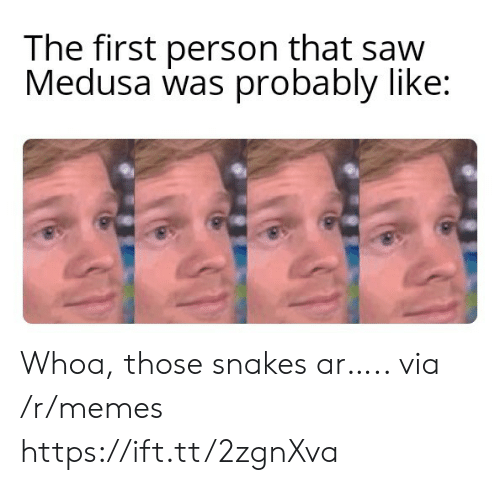Snakes: The first person that saw  Medusa was probably like: Whoa, those snakes ar….. via /r/memes https://ift.tt/2zgnXva