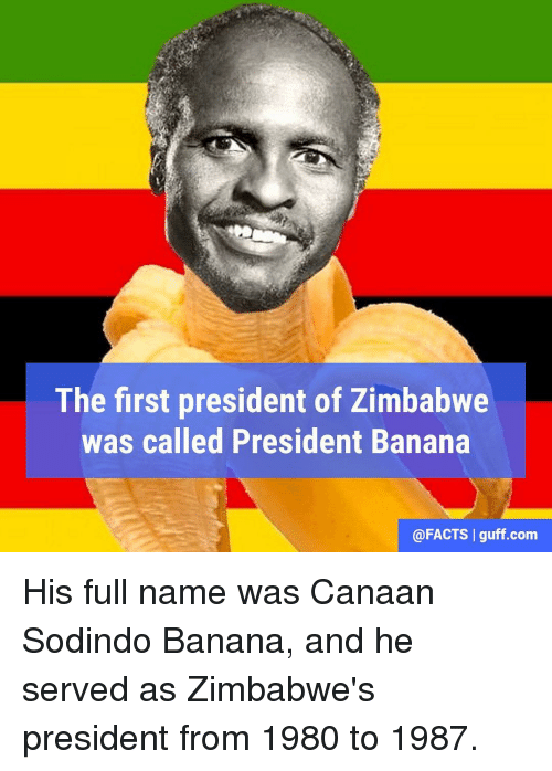 Facts, Memes, and Banana: The first president of Zimbabwe  was called President Banana  @FACTS I guff com His full name was Canaan Sodindo Banana, and he served as Zimbabwe's president from 1980 to 1987.
