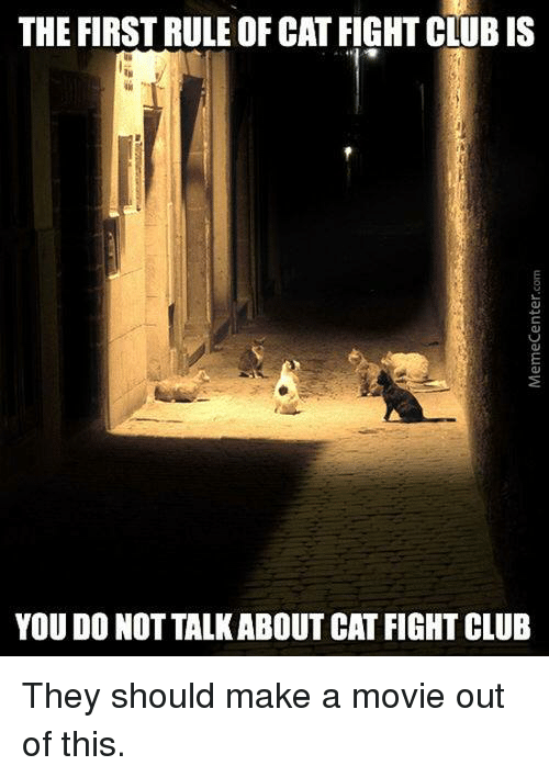 Catfighters: THE FIRST RULEOF CAT FIGHTCLUBIS  YOU DO NOT TALKABOUT CATFIGHT CLUB They should make a movie out of this.