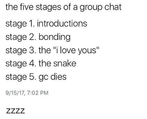 """Group Chat, Love, and Memes: the five stages of a group chat  stage 1. introductions  stage 2. bonding  stage 3. the """"i love yous""""  stage 4. the snake  stage 5. gc dies  9/15/17, 7:02 PM zzzz"""