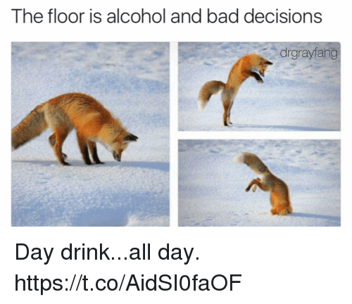 Bad, Funny, and Alcohol: The floor is alcohol and bad decisions  drgrayfang Day drink...all day. https://t.co/AidSI0faOF