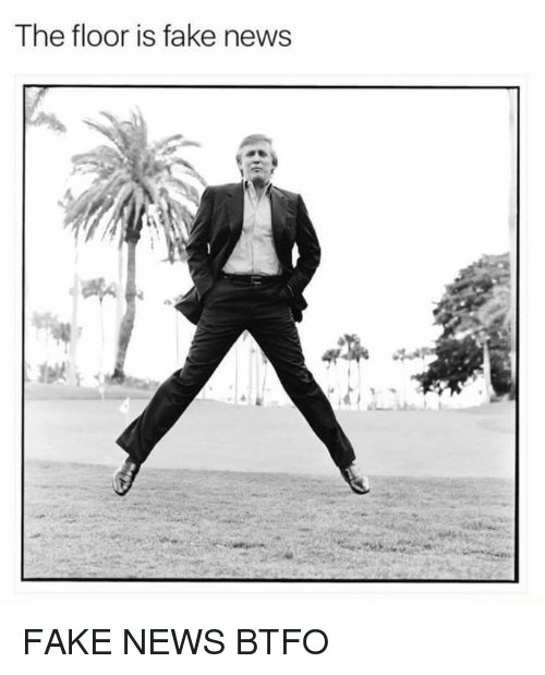 Fake, Memes, and News: The floor is fake news FAKE NEWS BTFO