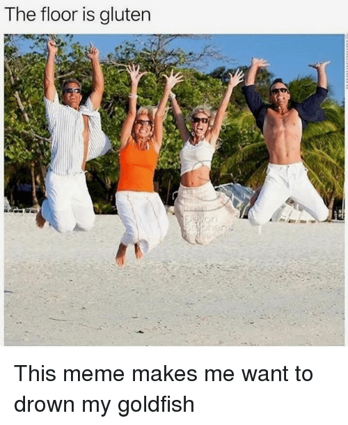 Funny, Goldfish, and Meme: The floor is gluten This meme makes me want to drown my goldfish