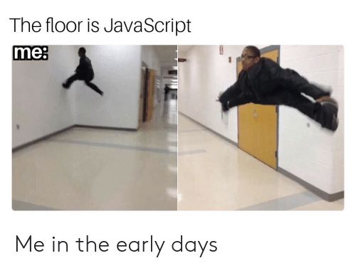 The Floor Is: The floor is JavaScript  me: Me in the early days