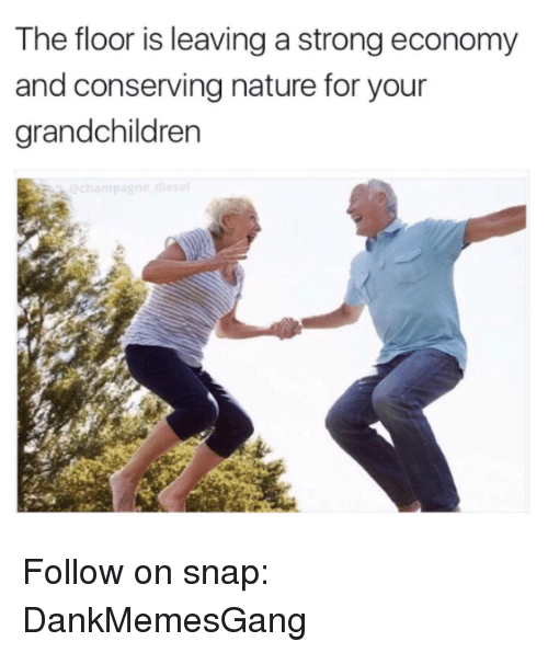 Memes, Nature, and Strong: The floor is leaving a strong economy  and conserving nature for your  arandchildren Follow on snap: DankMemesGang