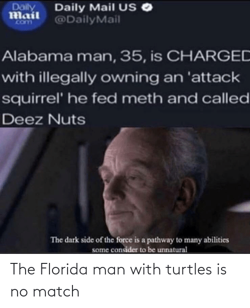 Florida Man: The Florida man with turtles is no match