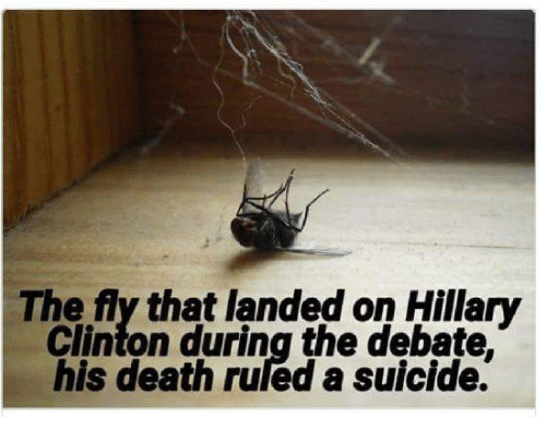Hillary Clinton, Memes, and Death: The fly that landed on Hillary  Clinton during the debate  his death ruled a suicide.