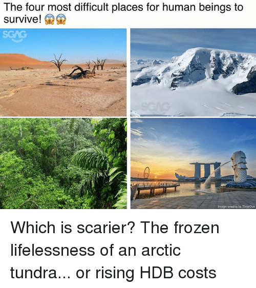 Frozen, Memes, and Image: The four most difficult places for human beings to  survive!  Image credita to TimeOut Which is scarier? The frozen lifelessness of an arctic tundra... or rising HDB costs