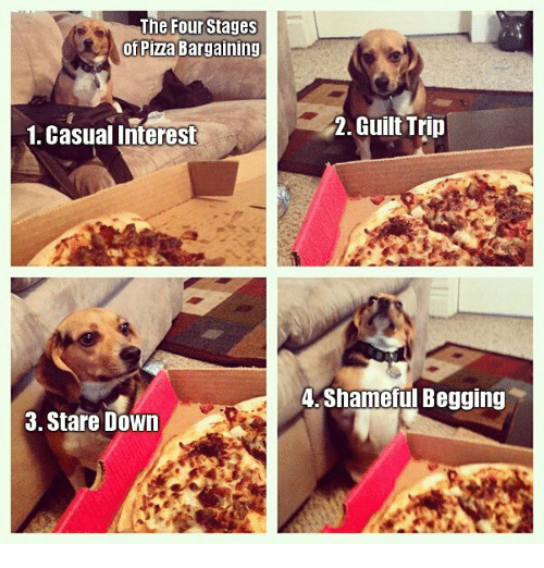 pizza: The Four Stages  of Pizza Bargaining  1. Casual Interest  Guilt Trip  4. Shameful Begging  3. Stare Down