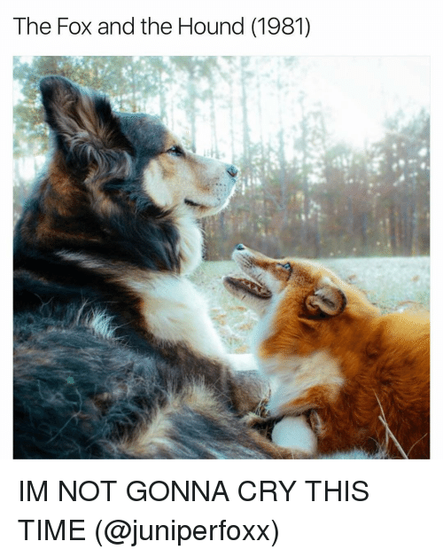 The Hound: The Fox and the Hound (1981) IM NOT GONNA CRY THIS TIME (@juniperfoxx)