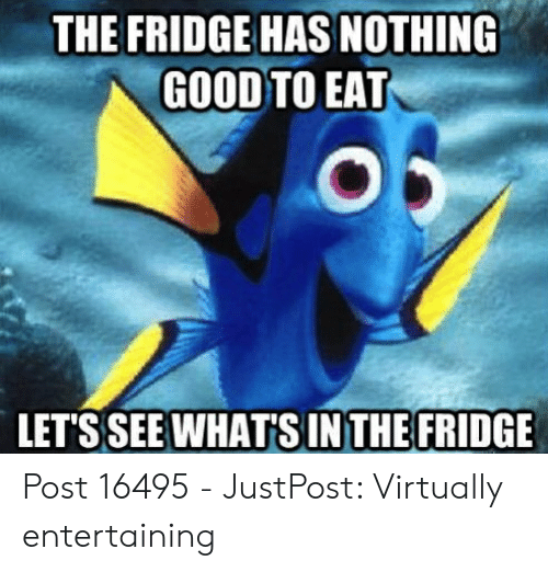 Nemo Meme: THE FRIDGE HAS NOTHING  GOOD TO EAT  LETSSEE WHAT'S IN THE FRIDGE Post 16495 - JustPost: Virtually entertaining