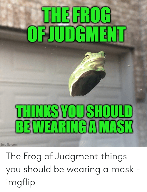 frog: The Frog of Judgment things you should be wearing a mask - Imgflip