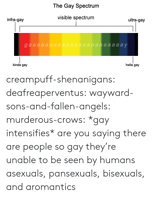 murderous: The Gay Spectrum  visible spectrum  ultra-gay  infra-gay  hella gay  kinda gay creampuff-shenanigans: deafreaperventus:  wayward-sons-and-fallen-angels:  murderous-crows:  *gay intensifies*  are you saying there are people so gay they're unable to be seen by humans  asexuals, pansexuals, bisexuals, and aromantics