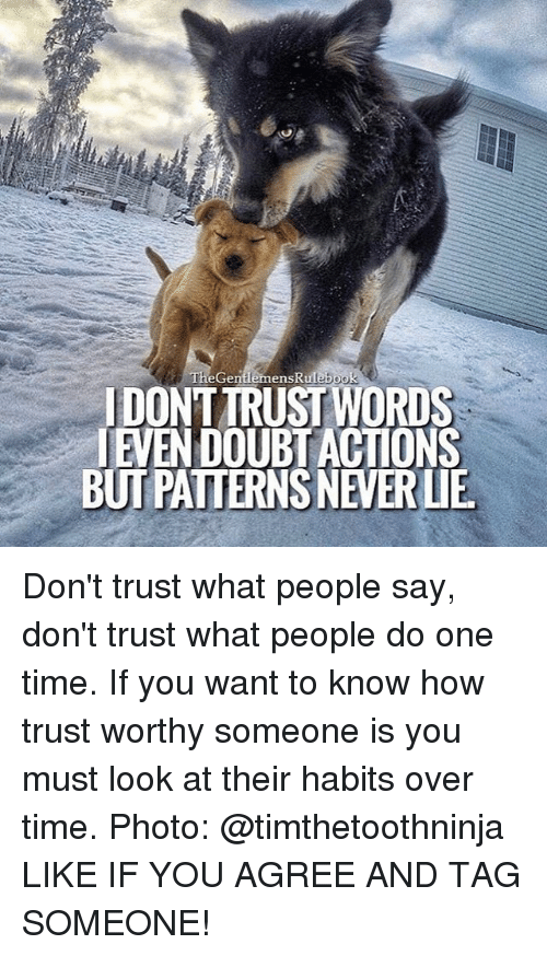 Memes, Tag Someone, and 🤖: The Gentlemen Rulebook  IDONTTRUSTWORDS  TEMENDOUBTACIONS  BUTPATTERNSNEVERLIE Don't trust what people say, don't trust what people do one time. If you want to know how trust worthy someone is you must look at their habits over time. Photo: @timthetoothninja LIKE IF YOU AGREE AND TAG SOMEONE!