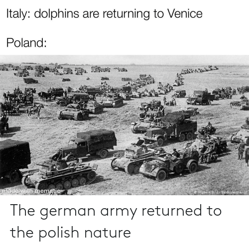 german army: The german army returned to the polish nature