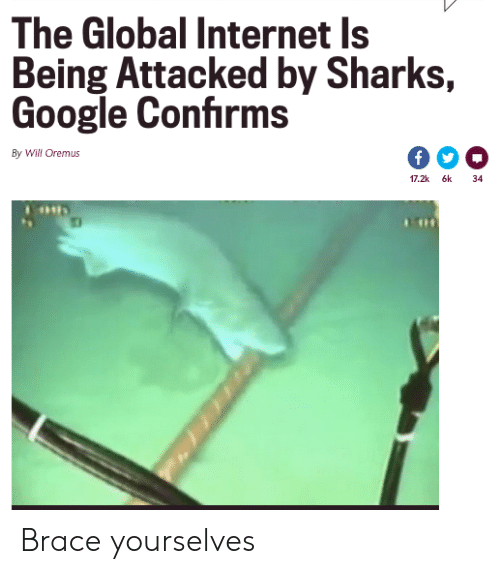 brace: The Global Internet Is  Being Attacked by Sharks,  Google Confirms  By Will Oremus  17.2k 6k  34 Brace yourselves