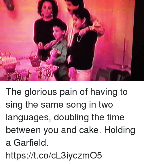 Memes, Cake, and Time: The glorious pain of having to sing the same song in two languages, doubling the time between you and cake. Holding a Garfield. https://t.co/cL3iyczmO5