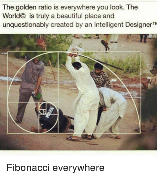 beautiful places: The golden ratio is everywhere you look. The  World is truly a beautiful place and  unquestionably created by an Intelligent DesignerTN Fibonacci everywhere