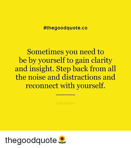 Memes, Good, and All The:  #the good quote.co  Sometimes you need to  be by yourself to gain clarity  and insight. Step back from all  the noise and distractions and  reconnect with yourself.  unknown thegoodquote🌻