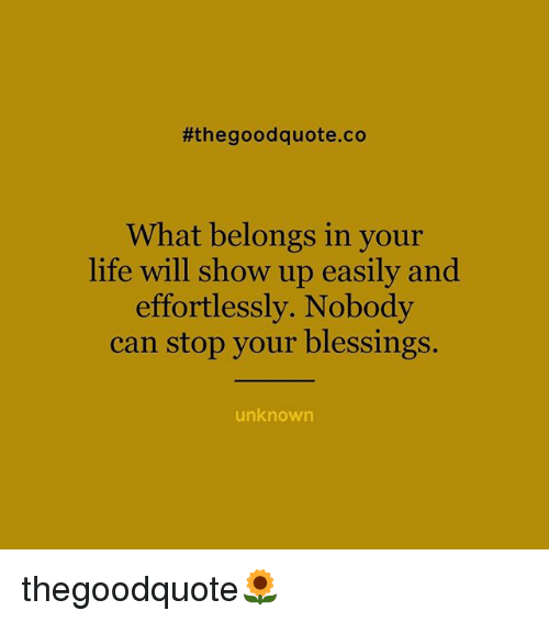 Life, Memes, and Good:  #the good quote co  What belongs in your  life will show up easily and  effortlessly. Nobody  can stop your blessings.  unknown thegoodquote🌻