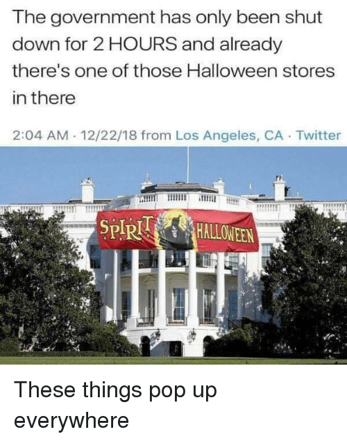 spr: The government has only been shut  down for 2 HOURS and already  there's one of those Halloween stores  in there  2:04 AM 12/22/18 from Los Angeles, CA Twitter  SPR These things pop up everywhere