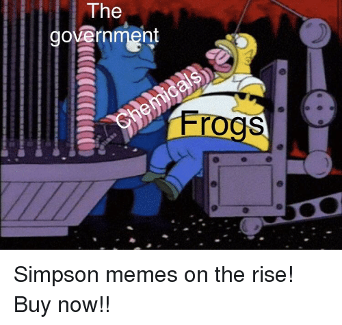 Simpson Memes: The  government