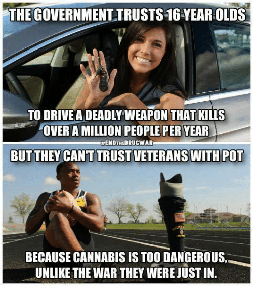 memes: THE GOVERNMENT TRUSTS16YEAROLDS  TO DRIVE A DEADLY WEAPON THAT KILLS  OVER A MILLION PEOPLE PER YEAR  ENDTHEORUCWARu  BUT THEY CANT TRUSTVETERANS WITH POT  BECAUSE CANNABIS IS TOO DANGEROUS  UNLIKE THE WAR THEY WERE JUSTIN.