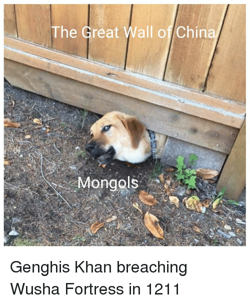 Fortress: The Great Wall of China Genghis Khan breaching Wusha Fortress in 1211