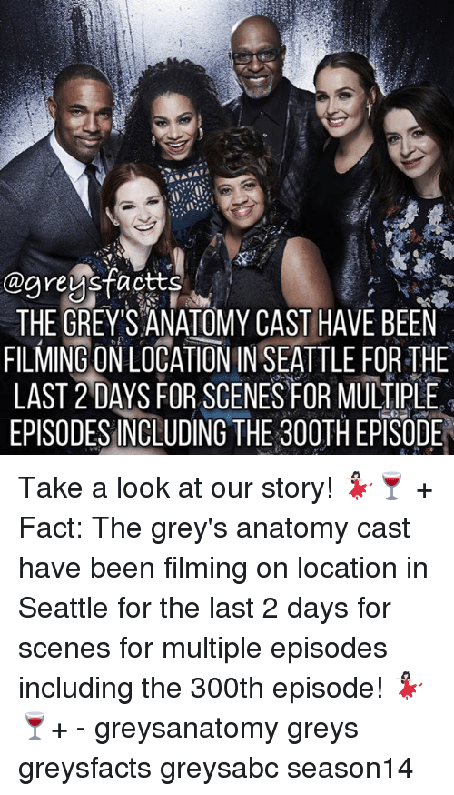Memes, Grey's Anatomy, and Seattle: THE GREYS ANATOMY CAST HAVE BEEN  FILMING ON LOCATION IN SEATTLE FOR THE  LAST 2 DAYS FOR SCENES FOR MULTIPLE  EPISODESINCLUDING THE 300TH EPSODE Take a look at our story! 💃🏻🍷 + Fact: The grey's anatomy cast have been filming on location in Seattle for the last 2 days for scenes for multiple episodes including the 300th episode! 💃🏻🍷+ - greysanatomy greys greysfacts greysabc season14