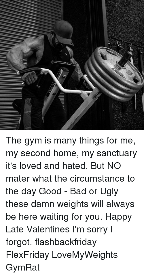 Bad, Gym, and Memes: The gym is many things for me, my second home, my sanctuary it's loved and hated. But NO mater what the circumstance to the day Good - Bad or Ugly these damn weights will always be here waiting for you. Happy Late Valentines I'm sorry I forgot. flashbackfriday FlexFriday LoveMyWeights GymRat