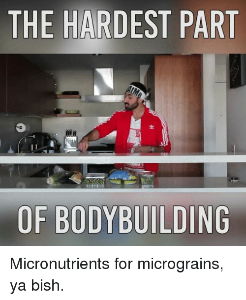 Memes, Bishes, and 🤖: THE HARDEST PART  OF BODYBUILDING Micronutrients for micrograins, ya bish.