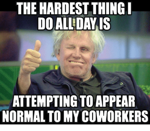 Funny Meme For Coworker : The hardest thing i do all day is attempting toappear