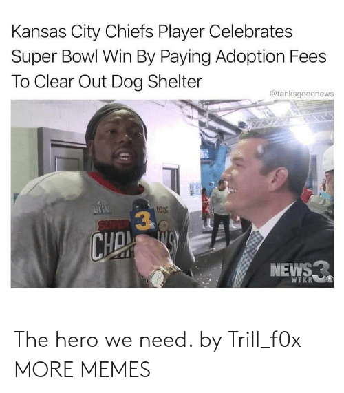 The Hero We Need: The hero we need. by Trill_f0x MORE MEMES