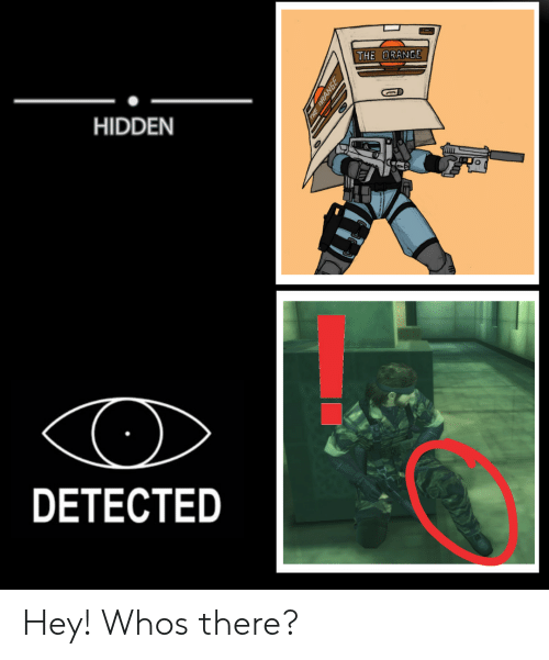 the hidden: THE  HIDDEN  DETECTED Hey! Whos there?