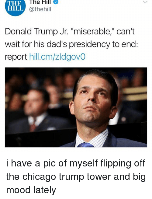 "Chicago, Donald Trump, and Memes: THE  HILL  The  Hill  @thehill  Donald Trump Jr. ""miserable,"" can't  wait for his dad's presidency to end:  report hill.cm/zldgovO i have a pic of myself flipping off the chicago trump tower and big mood lately"