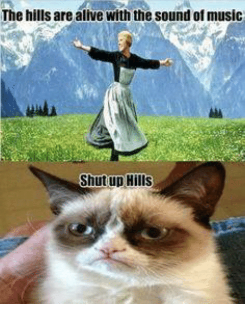 Sound Of Music Funny Meme : The hills are alive with sound of music shut up