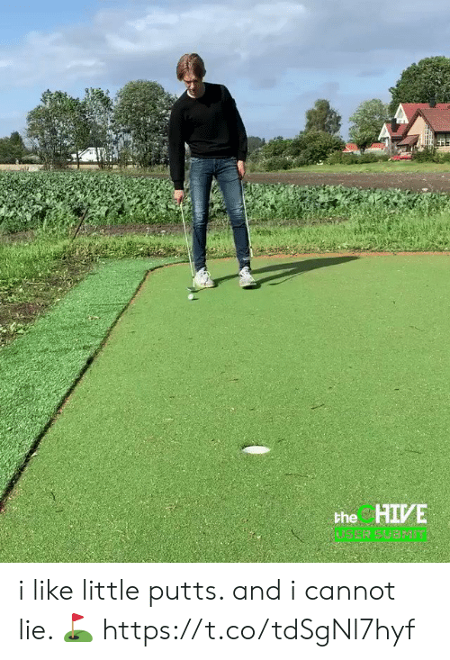And I Cannot Lie: the HIVE i like little putts. and i cannot lie. ⛳️ https://t.co/tdSgNl7hyf