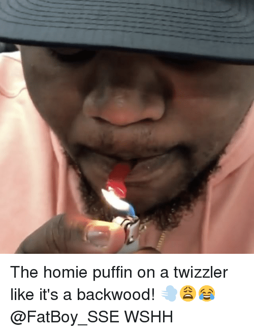 puffin: The homie puffin on a twizzler like it's a backwood! 💨😩😂 @FatBoy_SSE WSHH