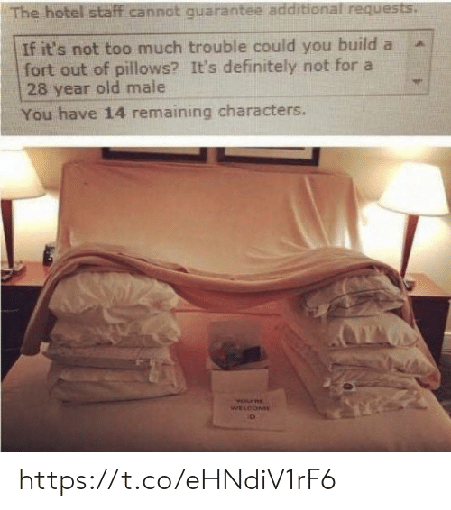 pillows: The hotel staff cannot quarantee additional requests.  If it's not too much trouble could you build a  fort out of pillows? It's definitely not for a  28 year old male  You have 14 remaining characters.  YOPRE  WELCOME https://t.co/eHNdiV1rF6