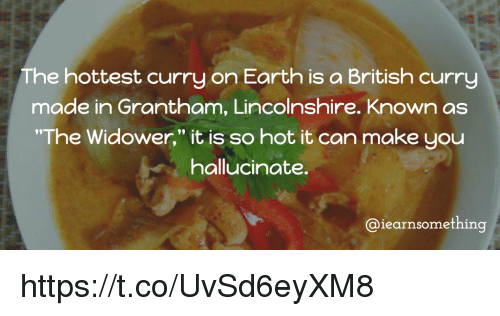 """memes: The hottest curry on Earth is a British curry  made in Grantham, Lincolnshire. Known as  """"The Widower,"""" it is so hot it can make you  hallucinate.  aiearnsomething https://t.co/UvSd6eyXM8"""