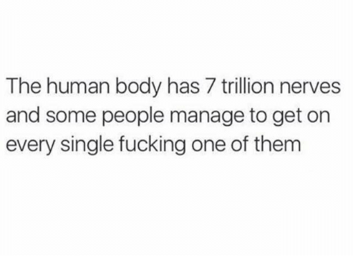 Bodies , Dank, and Fucking: The human body has 7 trillion nerves  and some people manage to get on  every single fucking oneof them