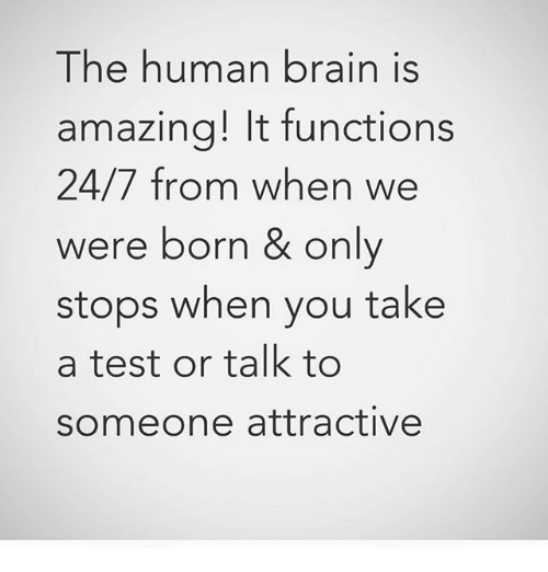 Memes, Brain, and Test: The human brain is  amazing! It function:s  24/7 from when we  were born & only  stops when you take  a test or talk to  someone attractivee