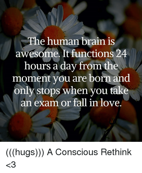 conscious: The human brain is  awesome. It functions 24  hours a day from the  moment you are born and  only stops when you take  an exam or fall in love. (((hugs))) A Conscious Rethink <3