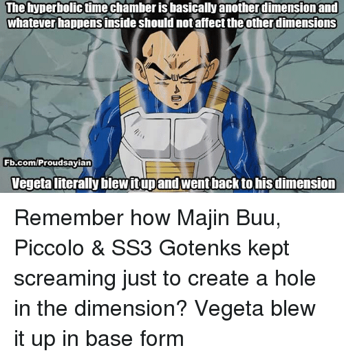 gotenks: The hyperbolictime chamber is basically another dimension and  whatever happensinside should notaffect theotherdimensions  Fb.com/Proud sayian  Vegetaliterally blewitupand went back to his dimension Remember how Majin Buu, Piccolo & SS3 Gotenks kept screaming just to create a hole in the dimension?  Vegeta blew it up in base form