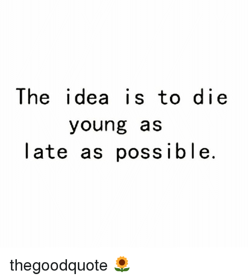 dying young: The idea is to die  young as  late as possible. thegoodquote 🌻