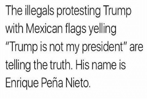 """mexican flag: The illegals protesting Trump  with Mexican flags yelling  Trump is not my president"""" are  telling the truth. His name is  Enrique Pena Nieto"""