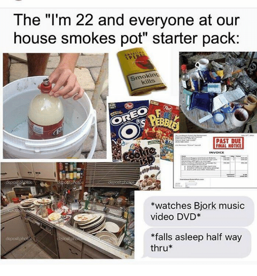 """invoice: The """"I'm 22 and everyone at our  house smokes pot"""" starter pack:  Smokin  PAST DUE  FINAL NOTICE  INVOICE  watches Bjork music  video DVD  *falls asleep half way  thru"""